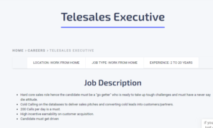 Telesales Executive work from home job