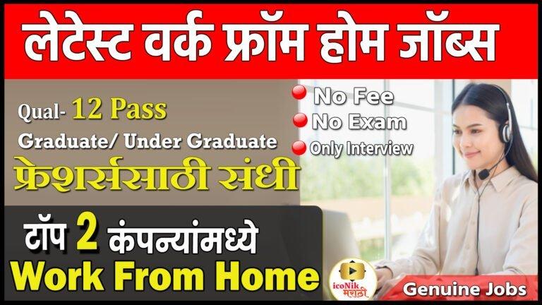 online work from home jobs in marathi